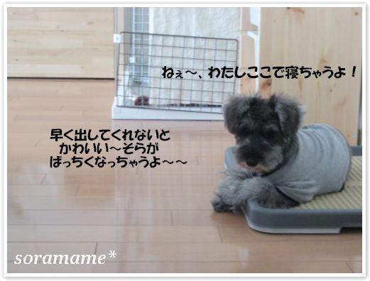 必殺技☆_c0180949_8573980.jpg