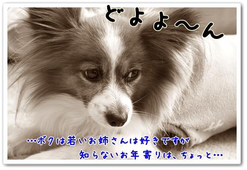 d0013149_2257338.jpg