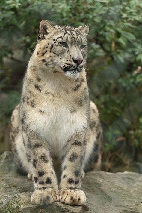 Zoo Wuppertal_a0091329_2153018.jpg