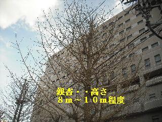 f0031037_18474952.jpg