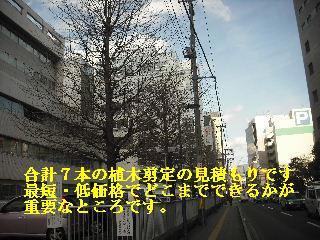 f0031037_1848546.jpg