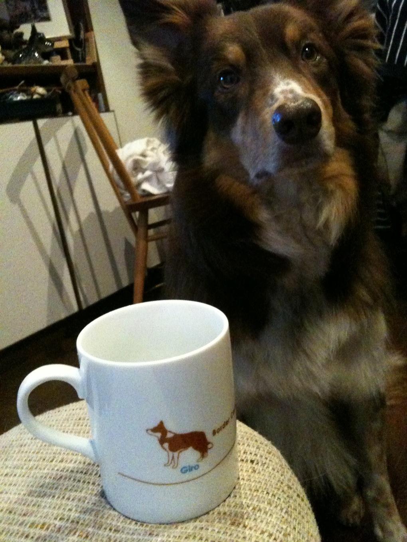 オリジナル マグカップ!_b0051654_23322551.jpg