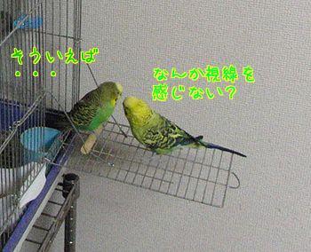 f0196665_23442878.jpg