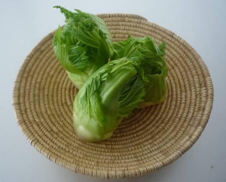 新顔野菜「蕾菜(つぼみな)」で春をいただく_a0138976_18243229.jpg