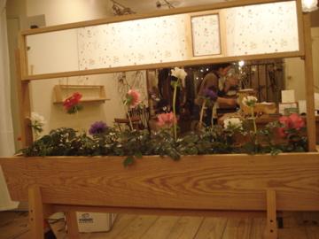 木と絵 -plants-終了その後…_d0130209_0194658.jpg