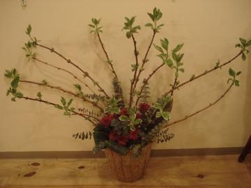 木と絵 -plants-終了その後…_d0130209_0275267.jpg