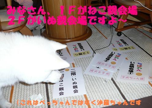 f0121712_1620045.jpg