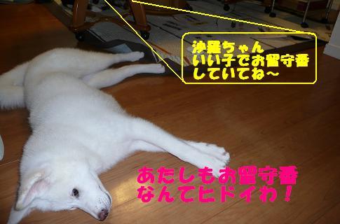 f0121712_16253246.jpg