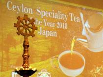 スリランカ&日本紅茶協会パーティー@品川プリンスホテル/猫展@アートイマジンギャラリー_f0006713_747835.jpg