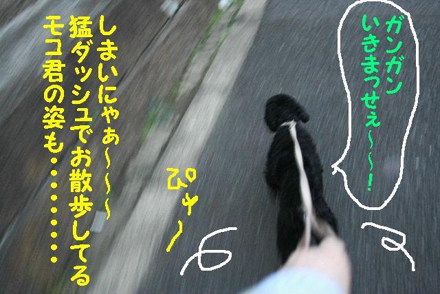 b0130018_10393024.jpg