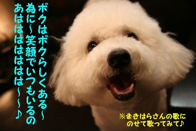 b0130018_10423140.jpg