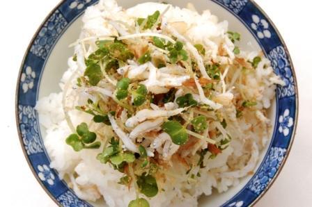 鶏肉とにんじんの春色サラダ_d0104926_2513920.jpg
