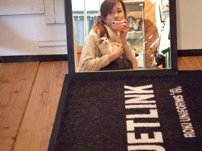 映画Tシャツのお店 JETLINK ・・・のにゃんこ達 (笑)_e0125732_06324.jpg