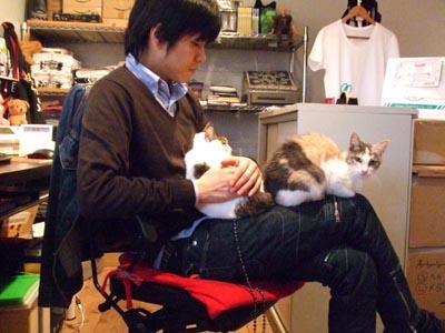 映画Tシャツのお店 JETLINK ・・・のにゃんこ達 (笑)_e0125732_064570.jpg