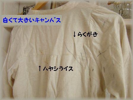 f0185351_11221857.jpg