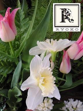 春のはなたち 1_c0128489_0253294.jpg