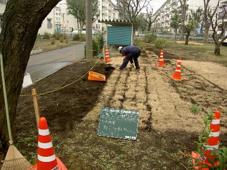 国立富士見台第二・第三団地 工事始まりました★_b0172896_83072.jpg