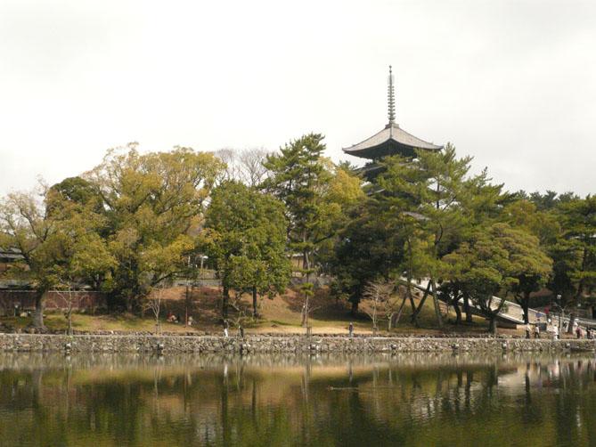 奈良への旅 其の一_f0201310_16234195.jpg
