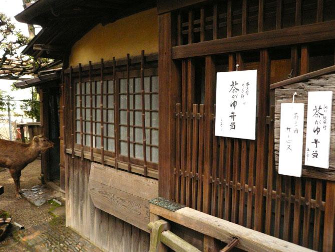奈良への旅 其の一_f0201310_1656017.jpg
