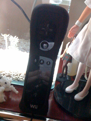 Wii Fit Plus_f0196753_3392653.jpg