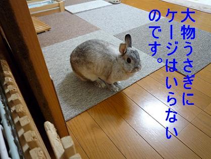 f0104057_2124160.jpg