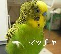 f0196665_1462321.jpg