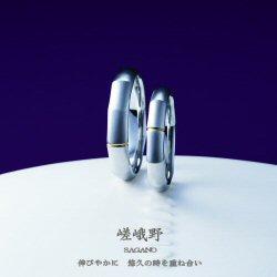 ギフコミ(岐阜県の情報サイト)のブライダル・結婚指輪コーナーへの口コミありがとうございます!_f0118568_1122192.jpg