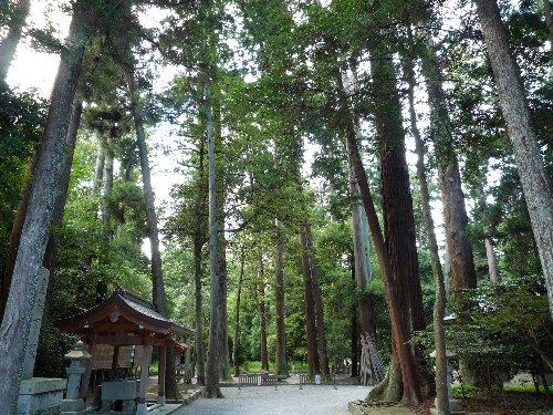 伊和神社(播磨国)_a0004391_22462465.jpg