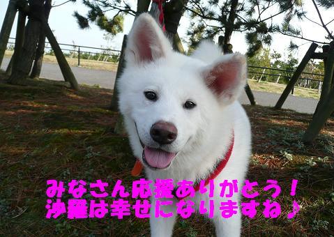 f0121712_16521081.jpg