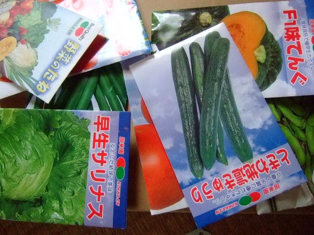 野菜の種まき.....気候不順で!_b0137932_192210.jpg