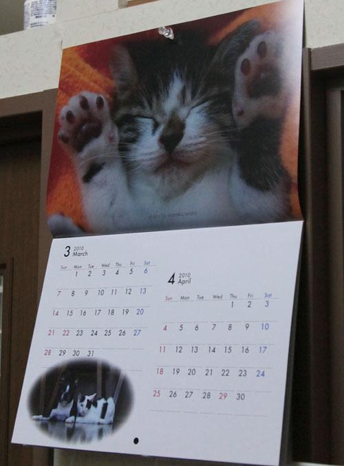 カレンダー発売中!_d0084952_0144663.jpg