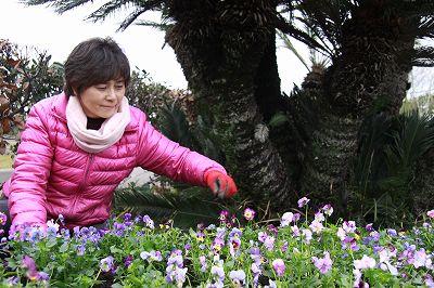 宮崎フラワーフェスタ in 夢咲ヴィオラ_b0137969_1857187.jpg