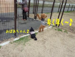 b0151505_17333764.jpg