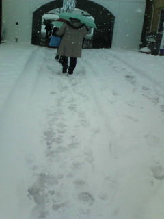 大雪の中、「世羅高原地産地消のつどい」に参加_e0094315_1157077.jpg