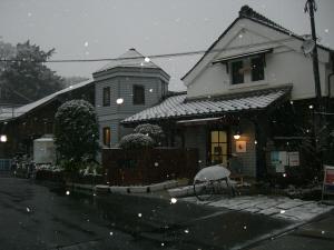 寒いですね~。_d0091122_17433686.jpg
