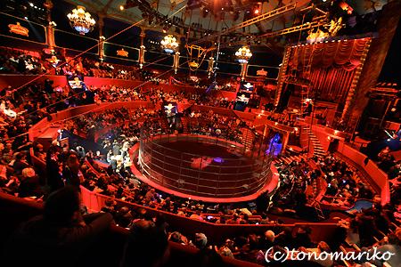 パリの名物「冬のサーカス」_c0024345_22481214.jpg