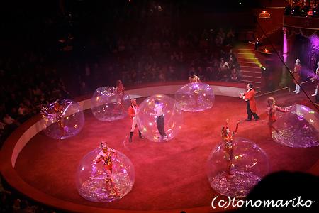パリの名物「冬のサーカス」_c0024345_22482798.jpg
