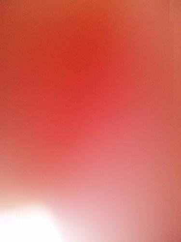 f0206068_1528795.jpg