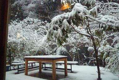 冬戻り_d0087595_9124218.jpg