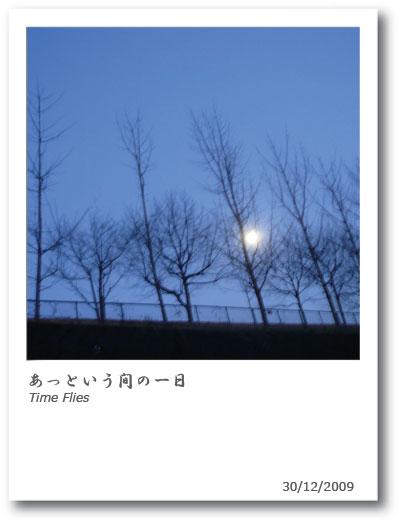 b0038810_0315678.jpg