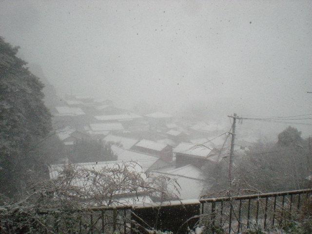 「冬」へ~~舞い戻り~??_a0125419_9533374.jpg