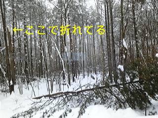f0148927_10152023.jpg