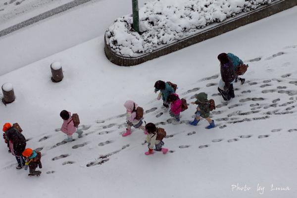 雪の日の彩り_c0165046_1724296.jpg