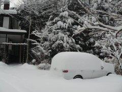 3月重たい雪です_f0141975_16361148.jpg
