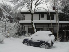 3月重たい雪です_f0141975_16363880.jpg