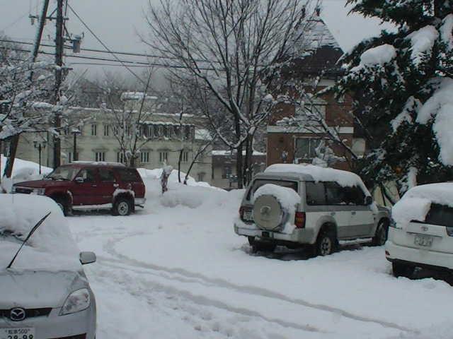 真冬だー☆_a0140584_9303897.jpg