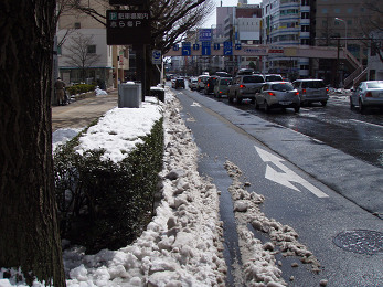 春まだ遠し・・・(その四)・・松の木折れだー!_b0074601_2220575.jpg