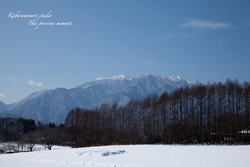大雪の後散歩で出会った美しい風景_c0137403_1823270.jpg