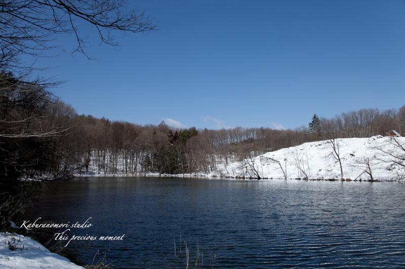 大雪の後散歩で出会った美しい風景_c0137403_1834960.jpg