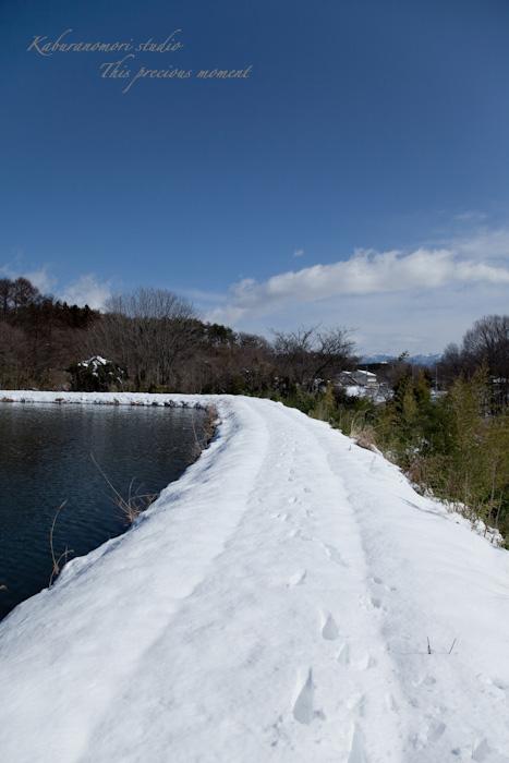 大雪の後散歩で出会った美しい風景_c0137403_1844873.jpg